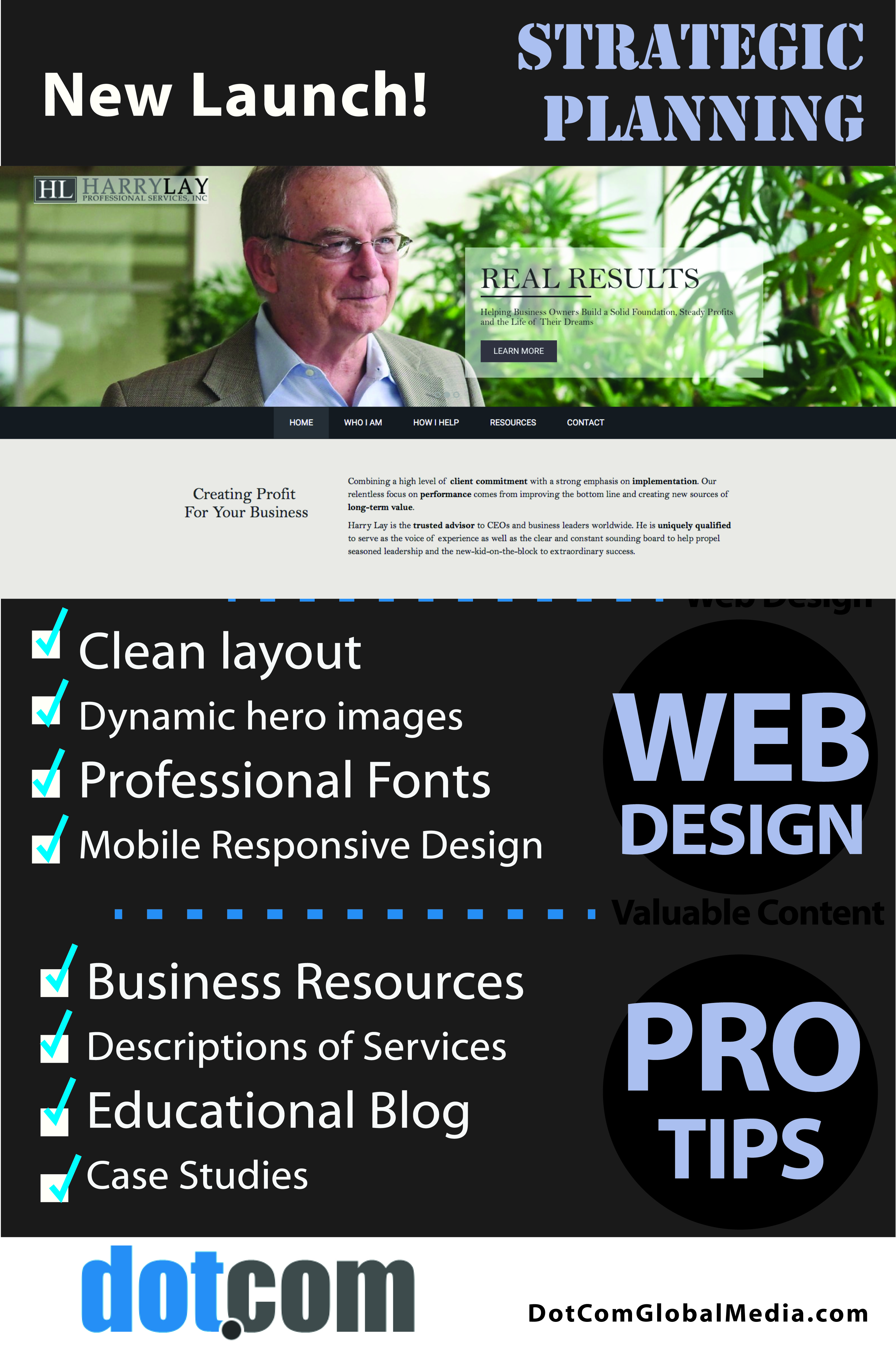 Harry Lay Launch - DotCom B2B services Website Design