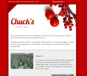 How to Optimize Your Email for Christmas